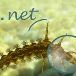Riu Net: App para evaluar la calidad del agua de los ríos