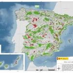 Red Natura 2000: impulso del desarrollo económico y la competitividad junto a la conservación