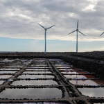 Greenpeace afirma que Canarias puede ser 100% renovable