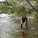 Los ríos acusan la eficiencia de las depuradoras