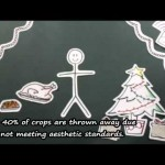 12 Days of a Sustainable Christmas