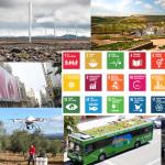 Las noticias de Medio Ambiente más leídas en  2015