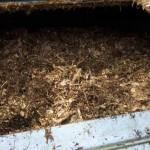 Economía circular: nuevo reglamento para impulsar la utilización de abonos orgánicos y obtenidos de los residuos