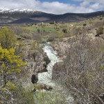 Actividades Ambientales 1 – 3 de Abril