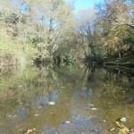 El papel de los indicadores hidromorfológicos en la determinación del estado ecológico de los ríos