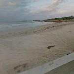 Bruselas pide prohibir el baño en 58 playas y ríos españoles