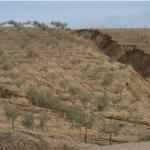 El 20% del paisaje español está desertificado