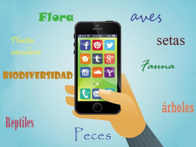 Las Mejores Apps Para Identificación De Flora Y Fauna Comunidad Ism
