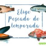 Greenpeace presenta la primera aplicación web para identificar el pescado de temporada