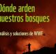 wwf incendios