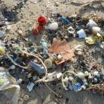 La Comisión Europea estudia cómo reducir los microplásticos en el mar