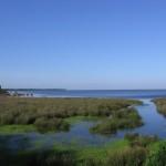 El Espacio Natural Doñana se amplía con 14.400 hectáreas