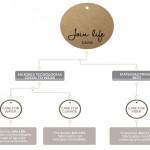Zara lanza una colección de ropa sostenible