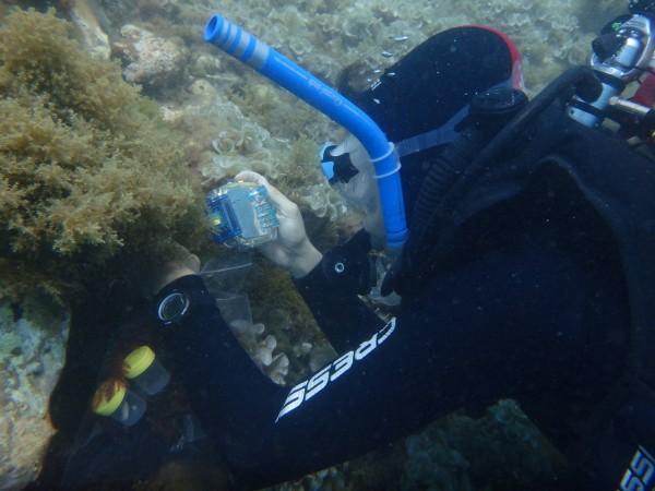 Imagen Observadores del Mar https://www.facebook.com/observadoresdelmar/