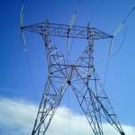 Iberdrola, sancionada con 700.000 € por electrocución de águilas imperiales y perdiceras