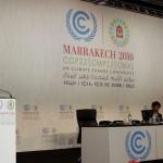 La COP22 debe poner los cimientos del Acuerdo de París