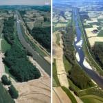 Restauración fluvial para mitigar los efectos de las inundaciones