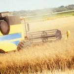 La agricultura ecológica gana terreno en España