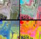 Figura 4: Ejemplo de diversas combinaciones de bandas y procesos espectrales realizados a partir de las imágenes adquiridas por el dron preparadas para interpretación.