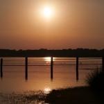 SEO Birdlife analiza las amenazas de nuestros tres humedales más emblemáticos
