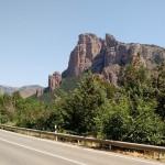 Cómo compensar las emisiones del tráfico rodado a través de la vegetación