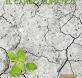cambio climatico financero