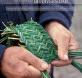conocimientos tradicionales biodiversidad