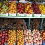 El Parlamento Europeo aprueba nuevas medidas contra el desperdicio alimentario