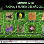 Se abren las votaciones para elegir el animal y la planta del año 2018