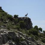 El 32% del territorio andaluz está protegido