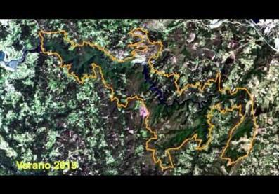 Cambio estacional en el Parque Fragas do Eume desde el espacio