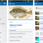 IUCN MedMIS – Apps para el seguimiento de especies exóticas marinas invasoras