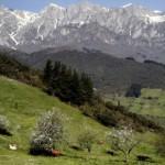 Picos de Europa, motor de desarrollo para sus habitantes