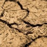 El Congreso aprueba por unanimidad el Proyecto de Ley de Medidas contra la sequía