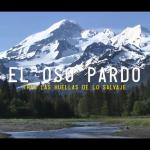 Trailer del documental El Oso Pardo: Tras las huellas de lo salvaje
