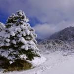 La malagueña Sierra de las Nieves se convertirá en el decimosexto parque nacional