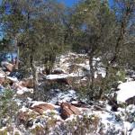 Actividades Ambientales 23 – 25 de Febrero