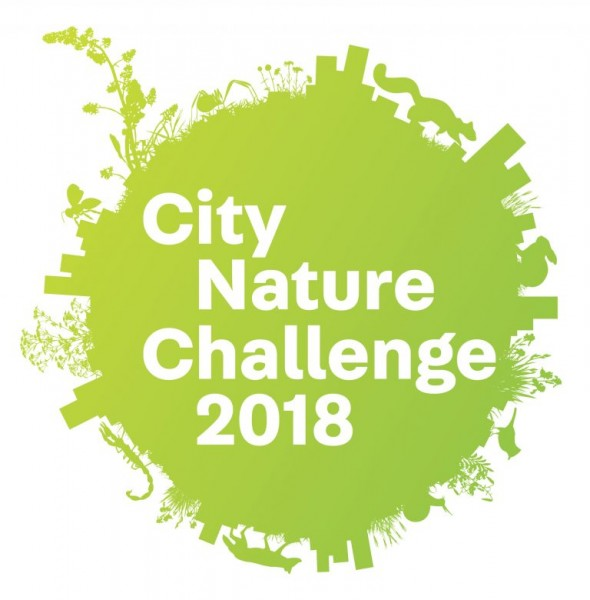 Logotipo del City Nature Challenge 2018.