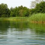 Medio Ambiente realizará un seguimiento de las aguas superficiales del Tajo, Guadalquivir y el Ebro