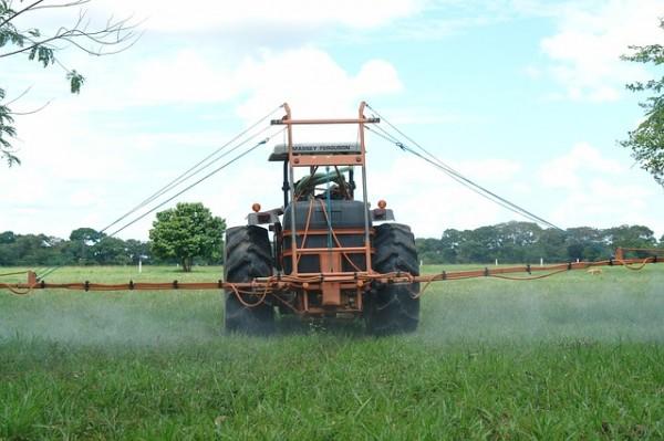 contaminación de suelos remediación con bacterias