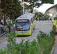 Planes de Movilidad Urbana Enfoques Nacionales y Prácticas Locales