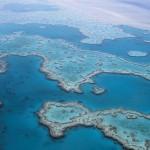 La Gran Barrera de Coral ha sobrevivido a cinco cambios ambientales drásticos