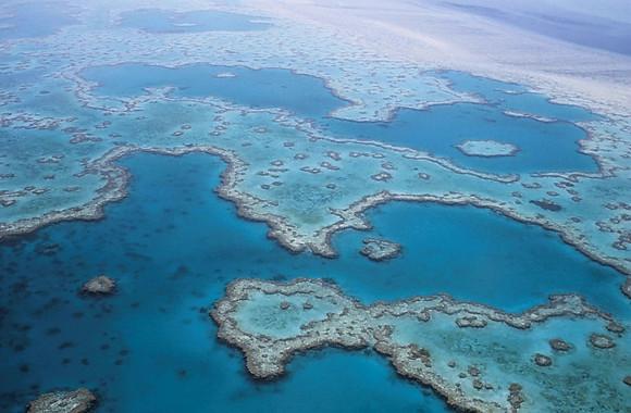 Gran Barrera de Coral australiana