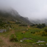 Protección de la biodiversidad en medios agrarios y ganaderos, el reto en la conservación de espacios naturales en el siglo XXI