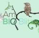 logo AmBIOBlitz web