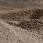 Biomasa, el enorme potencial de los restos vegetales aprovechables que genera el olivar