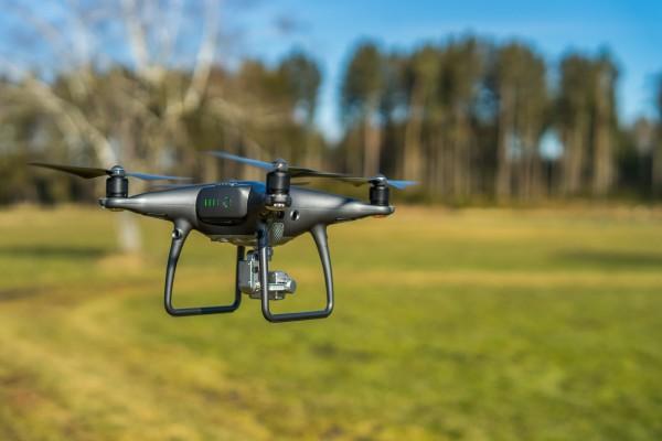 Tecnología verde para replantar hasta 100.000 árboles en un día con drones