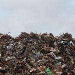 La valorización de residuos; caminando hacia la descarbonización en el sector residuos