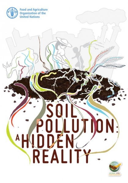 soil pollution a hidden reality