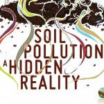 Soil Pollution, a hidden reality